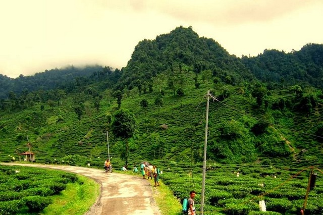 Garubathan View