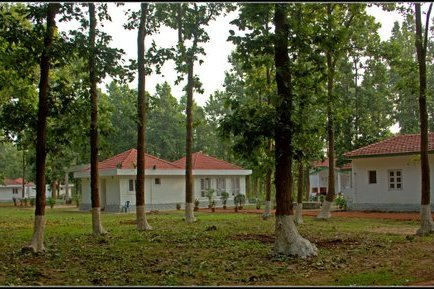 Jhargram Forest Lodge