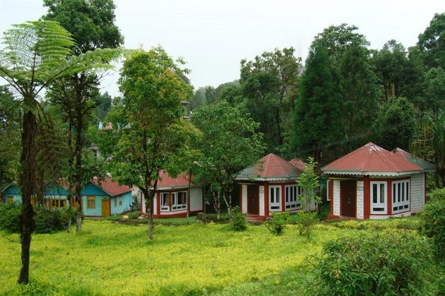 Loleygaon Forest Lodge