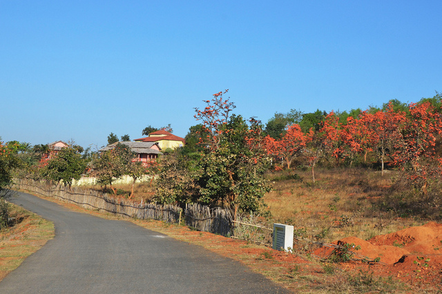 Mukutmonipur Forest Lodge