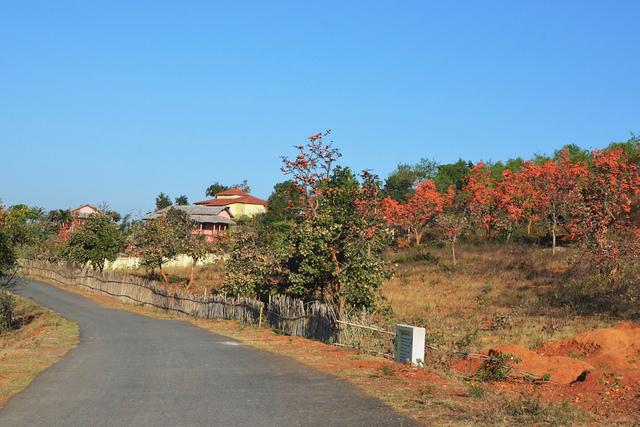 Mukutmonipur Forest Lodge