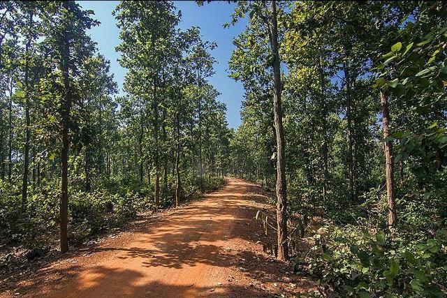 Mukutmonipur View