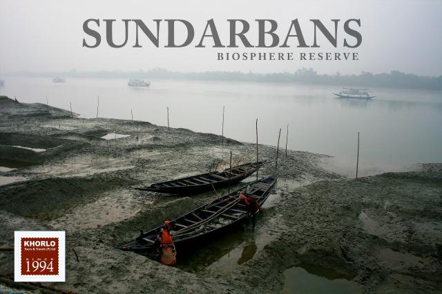 Sundarban Safari (2019-20)